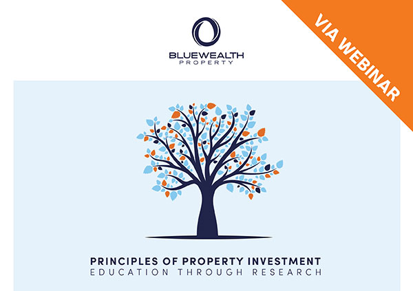 Blue Wealth Property